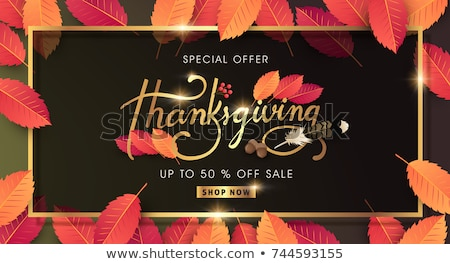 Special Poster Promotion Discount Thanksgiving Day Stock photo © robuart