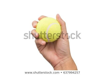 kéz · tart · teniszlabda · erős · sportok · grafikus - stock fotó © krisdog