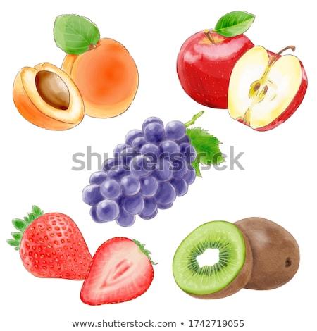 Apricot, strawberry and kiwi on white background. Watercolor illustration Stock photo © ConceptCafe