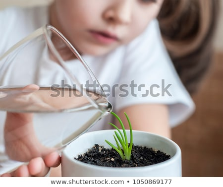 Girl watering plants on white Stock photo © Elnur