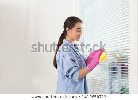 Personne nettoyage fenêtre femme main maison Photo stock © AndreyPopov