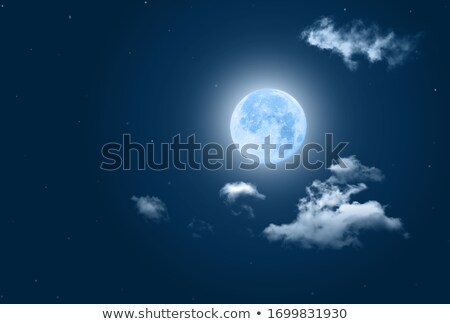 Background scene with fullmoon in winter Stock photo © bluering