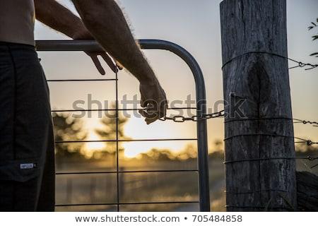 фермы ворот мнение облака лет Сток-фото © Clivia