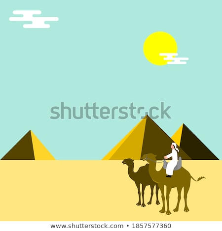 Camel riders on a background of pyramids Stock photo © liolle
