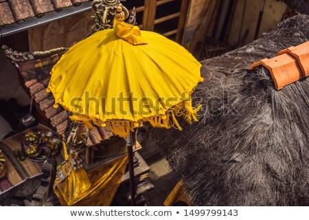 Tipikus esernyők otthon templom Bali Indonézia Stock fotó © galitskaya