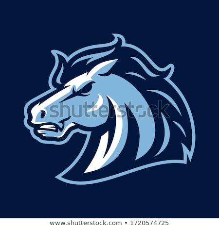 Stock foto: Mustang Stallion Mascot Cartoon Vector Image