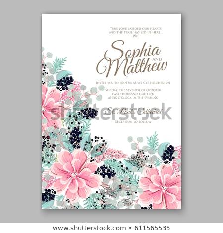 roze · bloem · luxueus · geschilderd · pastel · kleuren - stockfoto © lapesnape