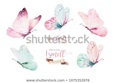 花 · 蝶 · 白 · 抽象的な · 黒 · 花 - ストックフォト © orson