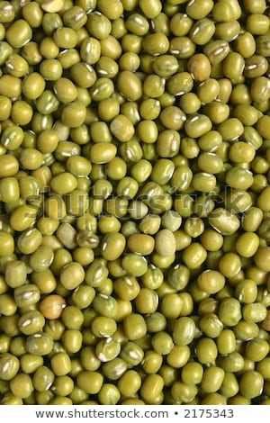 Mung beans, a good source of folic acid Stock photo © latent