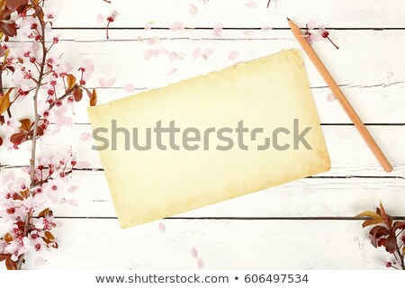 Aged paper with flowers Stock photo © HypnoCreative
