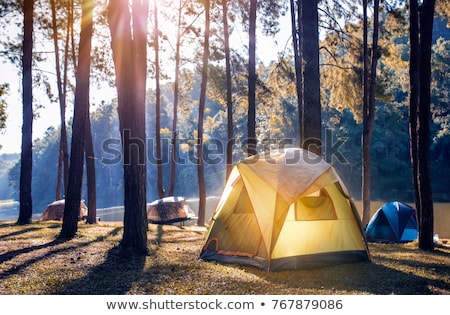 Camping tent in the morning sunlight Stock photo © bbbar