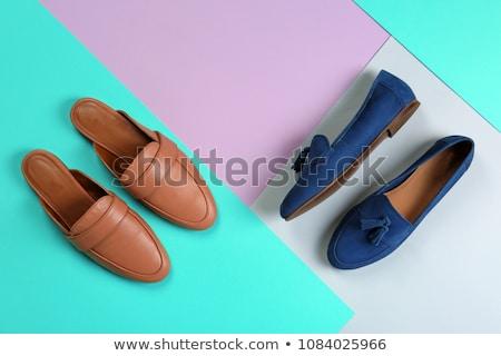 Fashionable female shoes Stock photo © nikitabuida