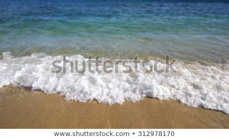 Beach Waves Washing Ashore Stock photo © ArenaCreative
