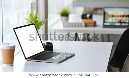 Computer monitor isolated - side view stock photo © dmitry_rukhlenko