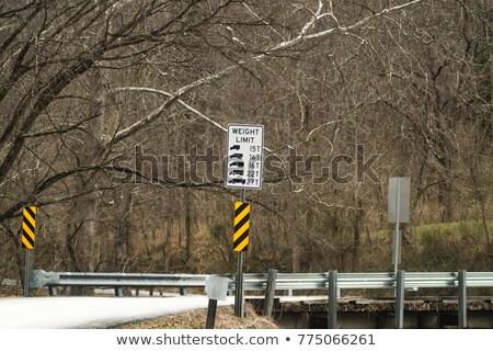 Ağırlık trafik sinyal şaşırtıcı yorumlama Stok fotoğraf © ajlber