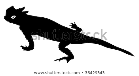 silhouette of desert horned lizard Stock photo © perysty