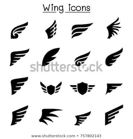 Wings Graphic Vector Set Stock photo © chromaco