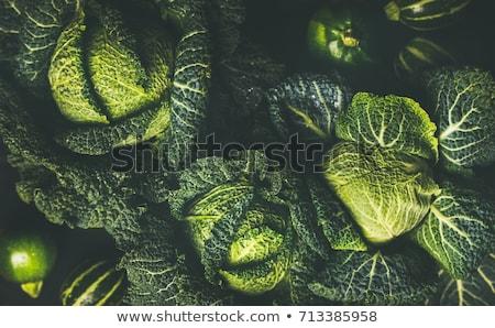 Savoy Cabbage Close up Stock photo © bobkeenan