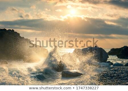 Dalgalar taşlar plaj cape cod okyanus Stok fotoğraf © grivet
