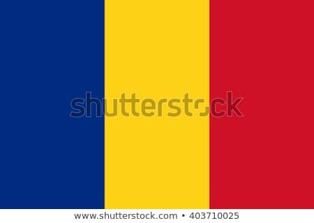 румынский флаг Румыния изображение текстуры Сток-фото © stevanovicigor