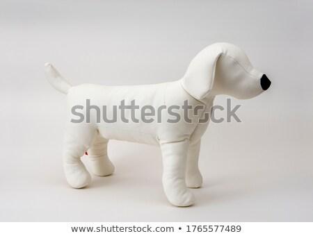 stuffed dog stock photo © Marcogovel