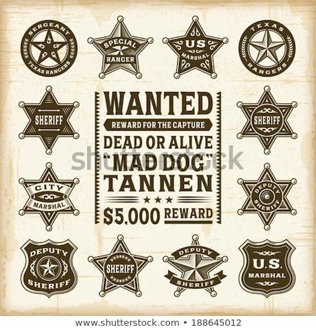 Sheriff badge design stock photo © ThomasAmby