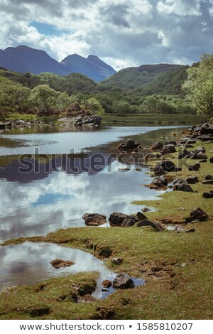 Loch Nedd, Highlands, Scotland Stock photo © phbcz