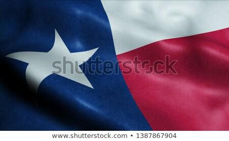 テキサス州 3D セット アイコン 地図 ストックフォト © cteconsulting