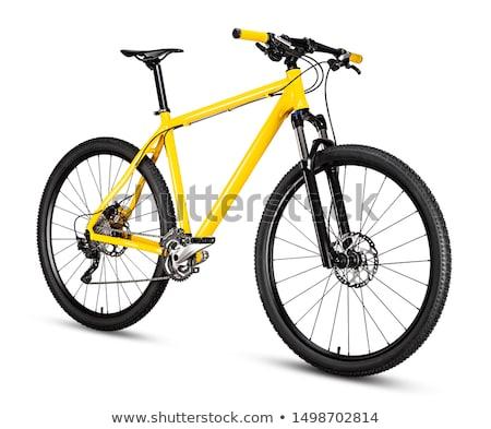 Bicicleta rueda sombra hierba verde verde estilo de vida Foto stock © exile7