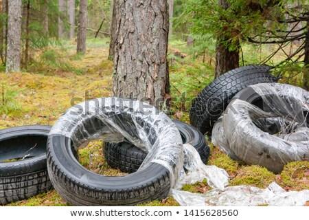 çöp · ağaç · doğa · manzara · yaz - stok fotoğraf © lianem