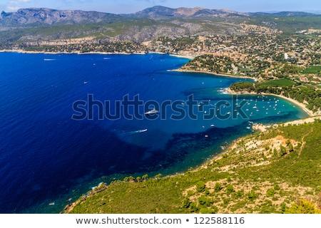 sahil · güney · Fransa · ağaç · doğa · manzara - stok fotoğraf © bertl123