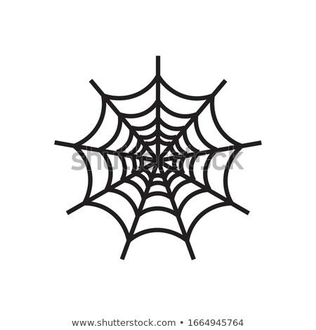 Abstrato teia da aranha ícone negócio projeto indústria Foto stock © cidepix