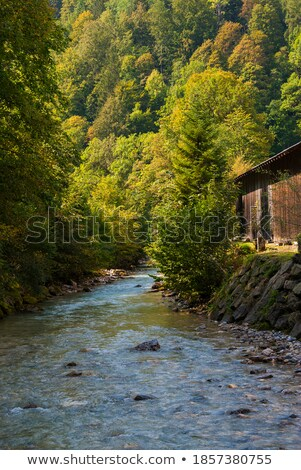 Kleurrijk stenen koud water kreek yosemite Stockfoto © meinzahn