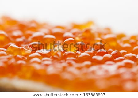 Rouge caviar poissons oeufs luxe Photo stock © adamr