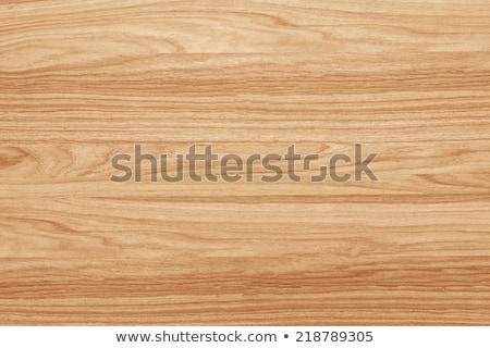 Old Beech wood texture Stock photo © stevanovicigor