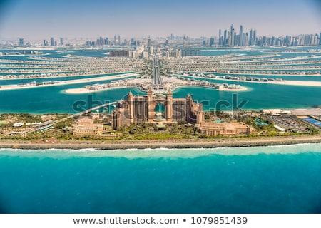 Plaj avuç içi Dubai palmiye ağaçları sahil gökyüzü Stok fotoğraf © IMaster