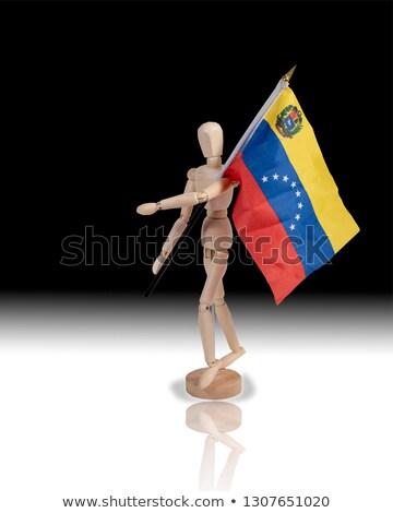 Miniatura bandeira onu isolado negócio Foto stock © bosphorus