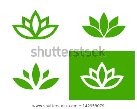 Rood · vreedzaam · vijver · bloem · water - stockfoto © smuay