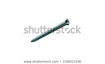 Phillips head screwdriver and wood screws Stock photo © juniart