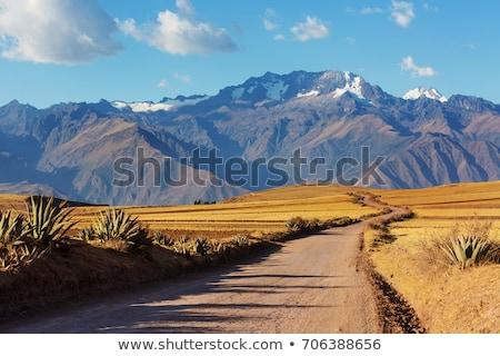風景 ペルー 小麦 谷 山 ストックフォト © Hofmeester