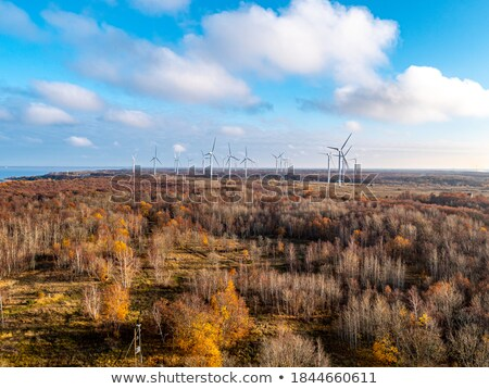 Wind generators in Rhine-Hesse, Germany Stock photo © fisfra