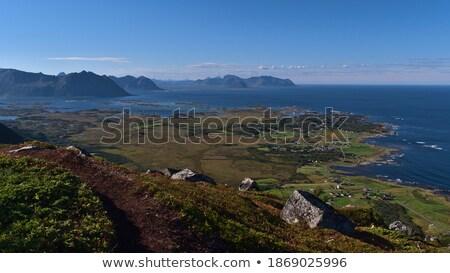 Pad kustlijn weide wild eiland gras Stockfoto © smithore