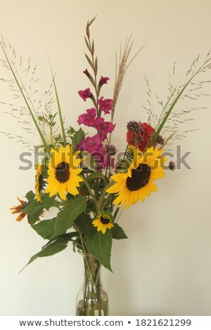 bouquet of bright sunflowers and gladioluses Stock photo © neirfy
