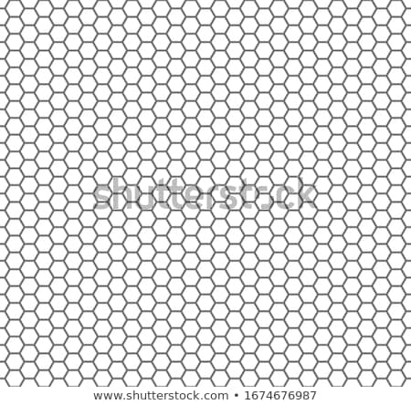 honeycomb seamless pattern stock photo © aliaksandra