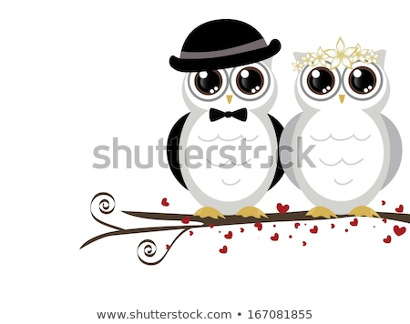 wedding of owls stock photo © adrenalina