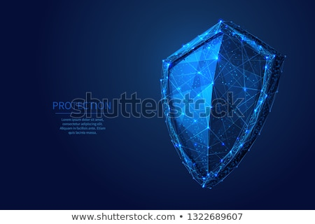 защищенный знак синий вектора икона дизайна Сток-фото © rizwanali3d