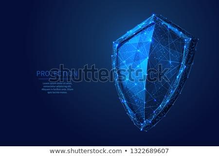 Protegido assinar azul vetor ícone projeto Foto stock © rizwanali3d
