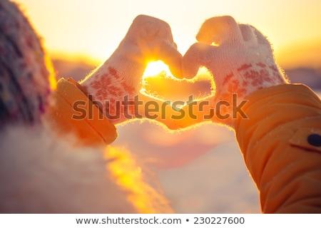 ストックフォト: 冬 · 愛 · 鳥 · キス · ツリー · ベクトル