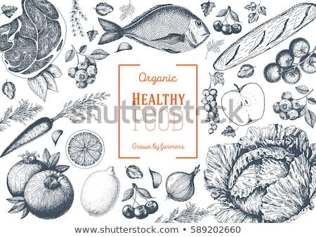 hand drawn fresh fish stock photo © frescomovie