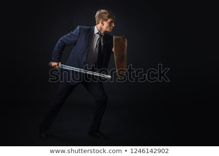 security shield protecting money stock photo © timurock